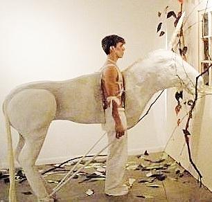 Daily Unicorn