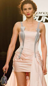 Sandro's dress